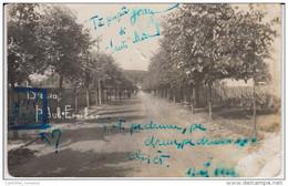 Romania - Prahova - Breaza - Bulevardul Eroilor Heroe's Avenue Trees Alley 1935 Oradea Carmen Sylva - Rumänien
