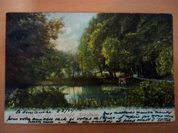Wasserpartie Bei Der Eremitage Arlesheim (5717) - BL Basle-Country