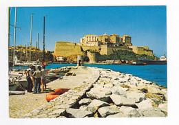 Haute Corse CALVI N°10 20 0552 Du Quai Du Nouveau Port De Plaisance En 1981 Remparts Citadelle Bateau Cargo - Calvi