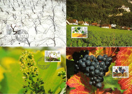 Liechtenstein 1994: Reben übers Jahr..Viticulture En 4 Saisons Zu 1031-34 Mi 1089-92 Yv 1030-33 MK-Set 126 (Zu CHF 6.00) - Cartoline Maximum