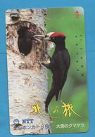 JAPAN - Used Phonecard NTT - Bird - Otros