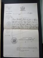 Handgschreven   UITtreksel  OVERLIJDEN  1876   Louisa  Elisabeth  JONES              STAD  ANTWERPEN - Overlijden