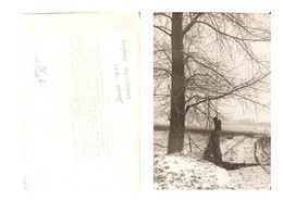 Deurne Persfoto Ongeluk Straaljager 1955 KE1788 - Deurne