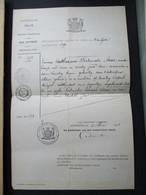 HAND  Geschreven Uittreksel  OVERLIJDEN 1891  Emma   Catharina  Fortunata  AEAR  Geb . En Over . In  ANTWerpen - Overlijden