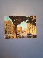 ITALIA-SICILIA-TRAPANI-PIAZZA MUNICIPIO-FG-1963 - Trapani