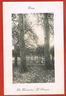 DECIZE -Nièvre-  Les Promenades- Le Kiosque-  Cpa Façon Cadre-  Scans Recto Verso - Decize