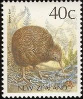 NOUVELLE ZELANDE - Kiwy Brun (kiwi De Mantell ) - Kiwi