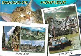 14 - BISOUS DE HONFLEUR - 1 PETIT CHAT -  2 VUES - 1 TIMBRE PHILATÉLIQUE AU DOS DE LA CARTE - CPM - ÉCRITE - - Honfleur