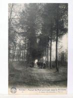 Kemmel. Avenue Du Mont - Heuvelland