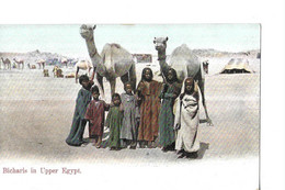 EGYPTE  BICHARIS  IN UPPER   EGYPT   COULEURS - Suez