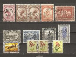 Congo Belge - Petit Lot De 13 Timbres Avec Cachet JADOTVILLE - Marcophilie - 1923-44: Usati