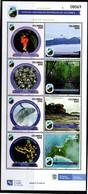 A440 - KOLUMBIEN - 2021- MNH- NATURAL PARKS- VIII ISSUE - FLOWERS, WHALE, FROGS - Kolumbien