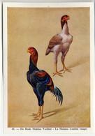 Fort - Hanen En Hennen - Coqs Et Poules - Roosters And Hens, Kippen, Poulets, Chickens - 41 - Unclassified