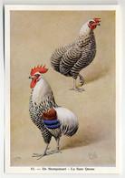 Fort - Hanen En Hennen - Coqs Et Poules - Roosters And Hens, Kippen, Poulets, Chickens - 51 - Unclassified