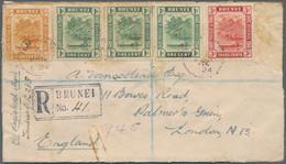 Brunei - Stempel: TEMBURONG (type D3): 1924 (6.1.), Registered Cover Bearing 14 'bush Huts And Canoe - Brunei (1984-...)