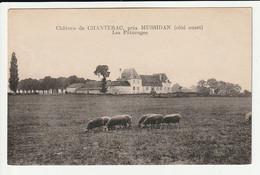 Saint Médard De Mussidan Château De Chanterac Les Pâturages - Otros Municipios