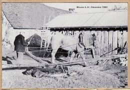 X44193 Peu Commun MOUAIS Ethnic Breiz MOUAIS 27 Décembre 1980 GAUIER Et Jument POLKA Dernier Manège à Cheval Cidre - Altri Comuni
