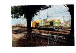 Cpm - Maroc - MEKNES - Train Locomotive - Avril 2008 - - Otros