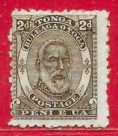Tonga N°11 2p Gris-olive 1892 (*) - Tonga (...-1970)