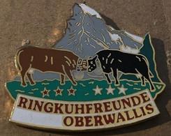 VACHES - COW - KUH - RINGKUHFREUNDE OBERWALLIS - VALAIS - SUISSE - SCHWEIZ - SVIZZERA - SWITZERLAND - EGF -CERVIN - (10) - Animaux