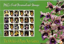 PAPUA NEW GUINEA, 2007 K1 ORCHID FULL SHEET MNH 12 BIRD OF PARADISE TAB - Papoea-Nieuw-Guinea