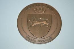 Rare Médaille De Table 7 Cm  Ville De Laval - Autres