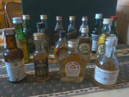 Lot De 16 Mignonnettes à Whisky Anciennes Non Ouvertes - Miniaturflaschen