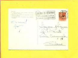 TARGHETTE-STORIA POSTALE-ANNULLI A TARGHETTA-  ISOLATI SU CARTOLINA- SIRACUSANA--MARCOFILIA-VERONA - 1946-60: Poststempel