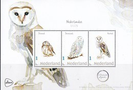 Nederland - Beleef De Natuur - Velletje - Steenuil/sneeuwuil/kerkuil - Uil/owl/Eule/chouette - MNH - Eulenvögel