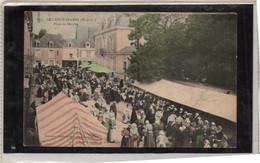 LE LION D'ANGERS (49)  Place Du Marché - Altri Comuni