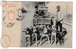 Bruxelles Une Charette à Chiens Hondenkar Attelage Chiens Dog Hond Cachet Paris 1909 - Teams