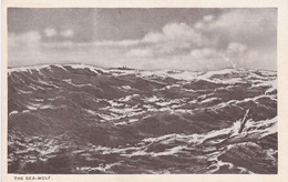 The Sea-wolf Sous-marin - Submarinos