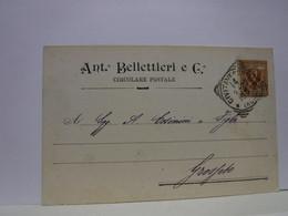 CIVITAVECCHIA  --- ROMA  -- ANTONIO BELLETTIERI  & CO. --  SPEDIZIONIERE - Civitavecchia