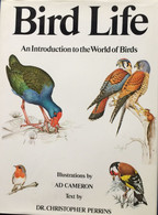 Book - Bird Life - - Wildlife