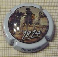 CHAMPAGNE LA CAMPAGNE DE FRANCE 1814 BICENTENAIRE BONAPARTE 1/12 - Other