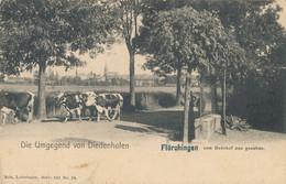 57) THIONVILLE - DIEDENHOFEN : NELS, Série 101, N°34 - Vaches - Rue De La Gare (BP) - Thionville