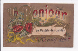 CP 40 CASTETS DES LANDES Un Bonjour - Castets