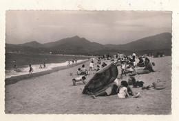 ARGELES SUR MER  La Plage - Argeles Sur Mer