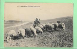 40----TYPES LANDAIS--Gardeuse De Moutons---voir 2 Scans - Unclassified