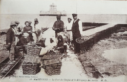 Marennes - Le Fort Du Chapus Et Le Détroquage Des Moules - Marennes