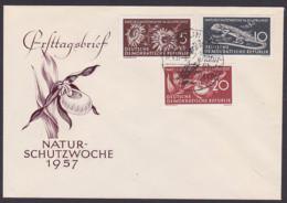 Naturschutzwoche 1957 DDR 561/63, Smaragdeidechse, Frauenschuh, Silberdistel - FDC: Sobres