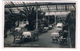 UK-3487   FOLKESTONE : Royal Pavilion Hotel - Winter Garden - Folkestone