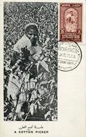 62041  Egypt, Maximum 26.1.1938 (first Day Postmark)international Cotton Congress,Baumwollkongress,congrès Du Coton,RR - Storia Postale