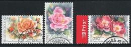 Gentse Florarien 2005 - Gebruikt