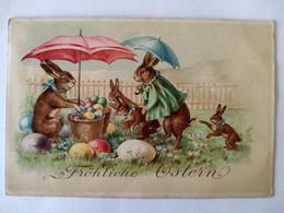 Cpa, Carte Primaire, Illustrateur, Famille De Lièvre, Fröliche Ostern, Joyeuses Pâques - Unclassified