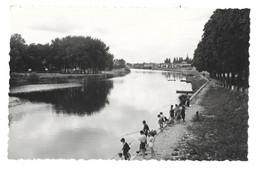 41 Montrichard, Les Bords Du Cher (5799) - Montrichard