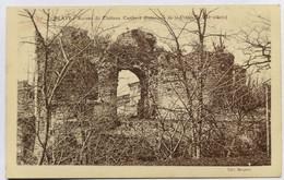 C. P. A. : 33 BLAYE : Ruines Du Château Caribert (Intérieur De La Citadelle ) - Blaye