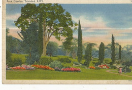 CPA, Trinitad , N°77771 , Rock Garden  - Trinidad , B.W.I. ,Ed. M.M. - Trinidad