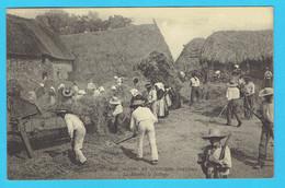 CPA  Bretagne à Localiser -Coutumes , Moeurs, Et Costumes Bretons - La Récolte , Le Battage - Bretagne