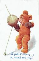 Illustrateur. Ours Boxeur.  Teddy Bear.  Ourson. Cachet Voir Dos. - Bears
